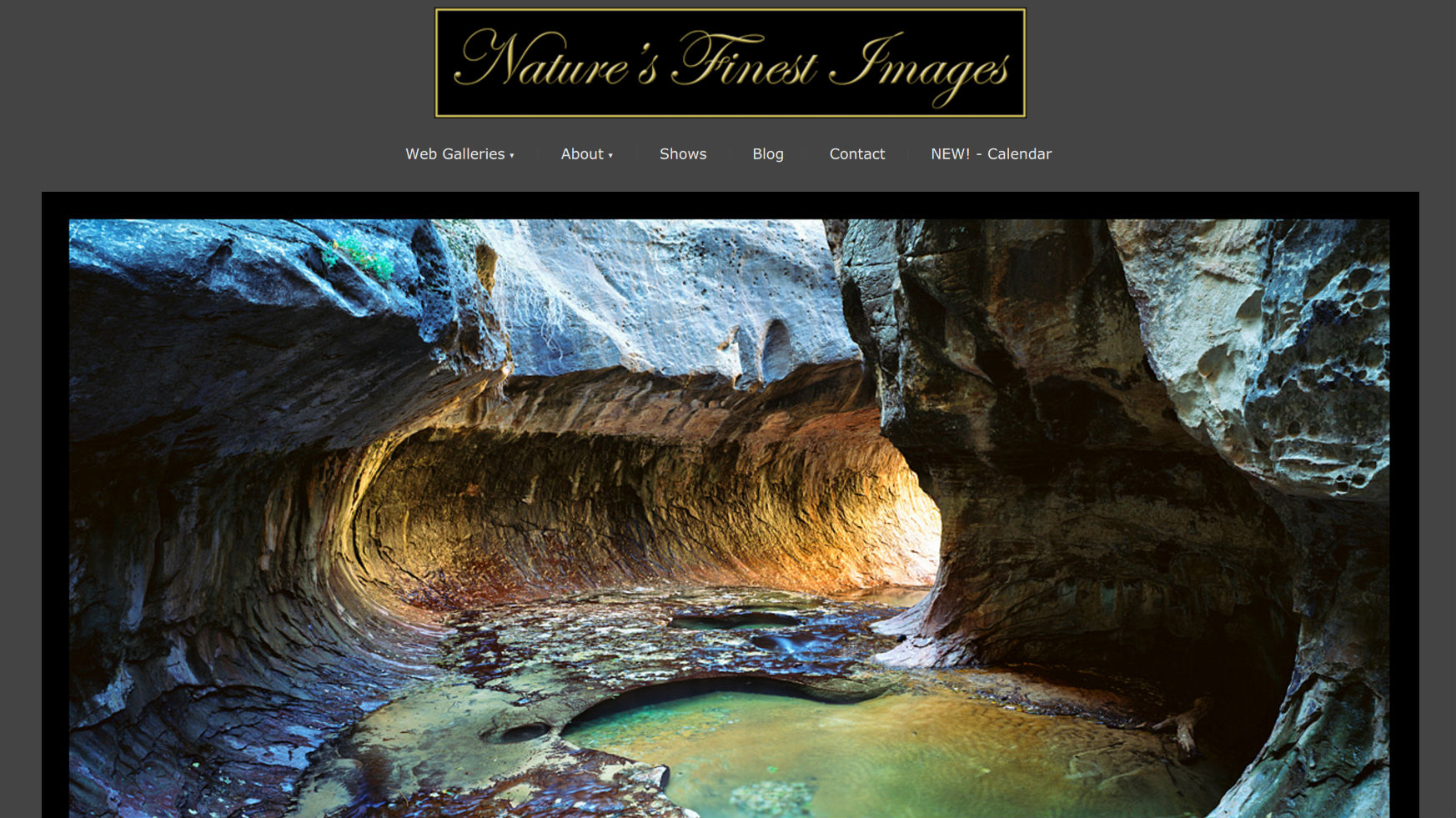 Nature's finest images Ridgway Colorado